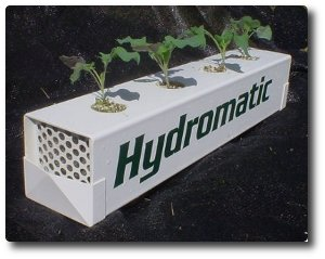 Grow hydroponics veggies year round with the Hydromatic